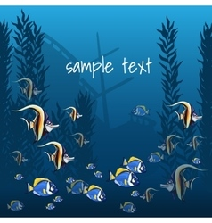 Marine life in bright colors and sample text vector image vector image