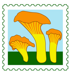 chanterelle mushrooms stamp vector image vector image