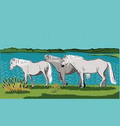 Horses walking vector