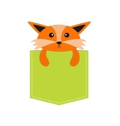 Fox in the pocket cute cartoon character dash vector