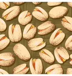 Pistachio nuts vector