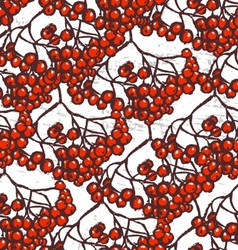 Rowanberry ink hand drawn seamless pattern vector image vector image