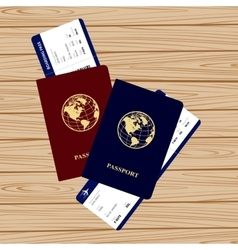Passports tickets vector