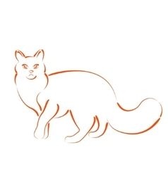 Sketched cat vector
