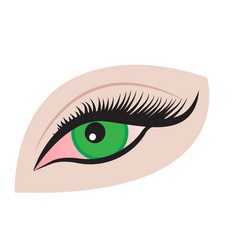 an eye red because of tiredness vector image