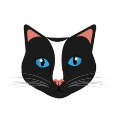 colorful cat front view graphic vector image