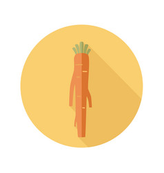 Horseradish flat icon vegetable root vector