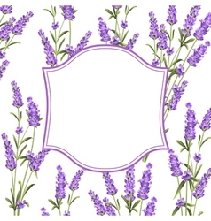 The Lavender frame line vector image