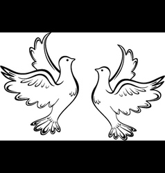 Two dove vector image vector image
