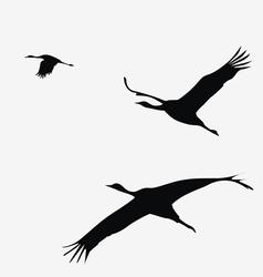 crane pack vector image