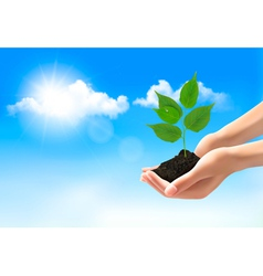 Hands holding a young plant vector image