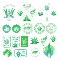 Aloe vera design elements stencil style vector