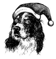 Christmas English setter dog vector image vector image