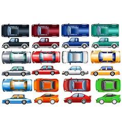 Set of cars and trucks in many colors vector