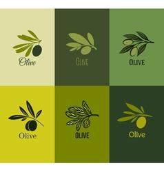 Olive branch Set of labels vector image