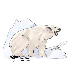 Polar bear and ice vector