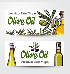 Banners with olive tree branches oil bottles and vector