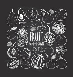 Set of fruit in doodle style on the chalkboard vector