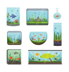 transparent aquarium isolated on white fish vector image vector image