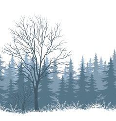 Winter landscape with trees and snow vector image vector image