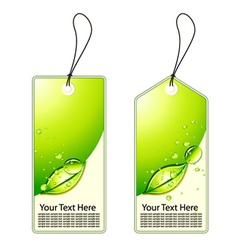 green shopping tags set vector image vector image
