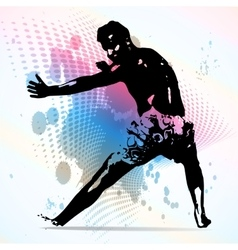Sports karate vector image