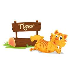 tiger zoo sign vector image vector image