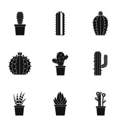 Cactus icon set simple style vector
