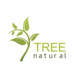 green tree natural logo vector image
