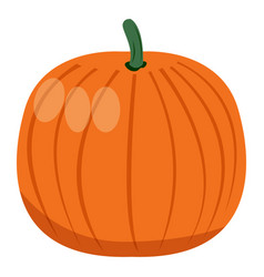 isolated pumpkin vegetable vector image vector image