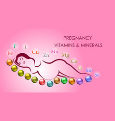 Pregnancy vitamins and minerals vector