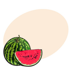 Whole watermelon and red slice with black seeds vector