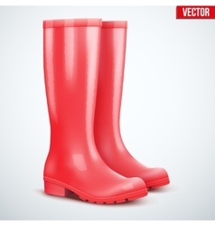 Pair of red rain boots vector image