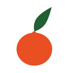 Sweet orange fruit vector