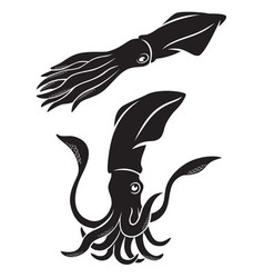 tentacles vector image