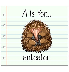 Flashcard letter a is for anteater vector