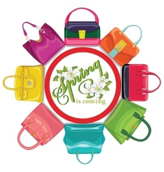Multicoloured fashion womens handbagcircle vector