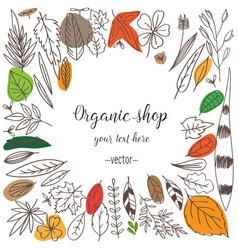 set doodle leaves vector image vector image