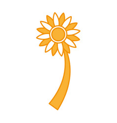 Beautifull sunflower isolated icon vector