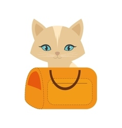 Kitten blue eyes yellow pet carrier traveling vector