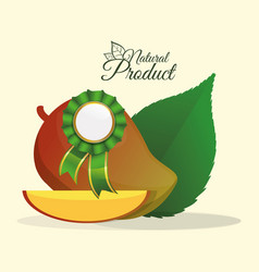 Mango natural product label premium quality vector