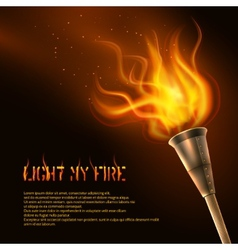 Torch Realistic Background vector image
