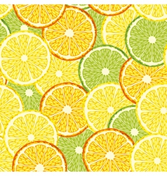 Seamless slices of citrus fruit vector