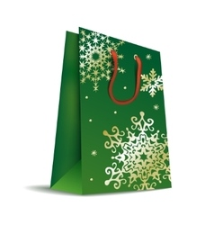 Bag in Christmas colors vector image vector image