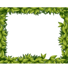 Border made of leaves vector