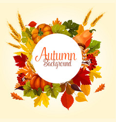 autumn poster of leaf fall and harvest vector image