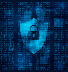 Encryption of information firewall - data vector