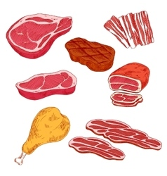 Fresh and cooked meat products for barbecue design vector image vector image