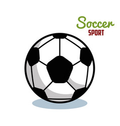 Soccer sport ball isolated icon vector