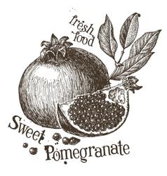 Pomegranate logo design template fruit or vector